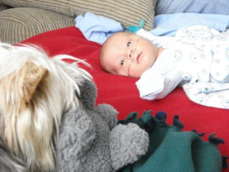 Max staring at his big brother