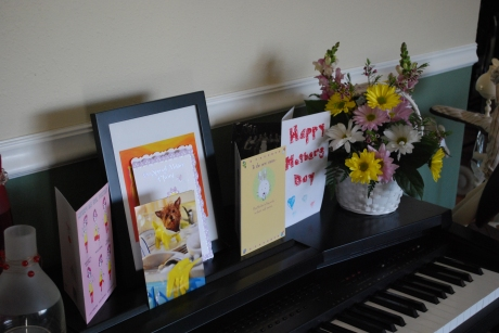 My Mother's Day cards and flowers from Tara - thanks everyone!